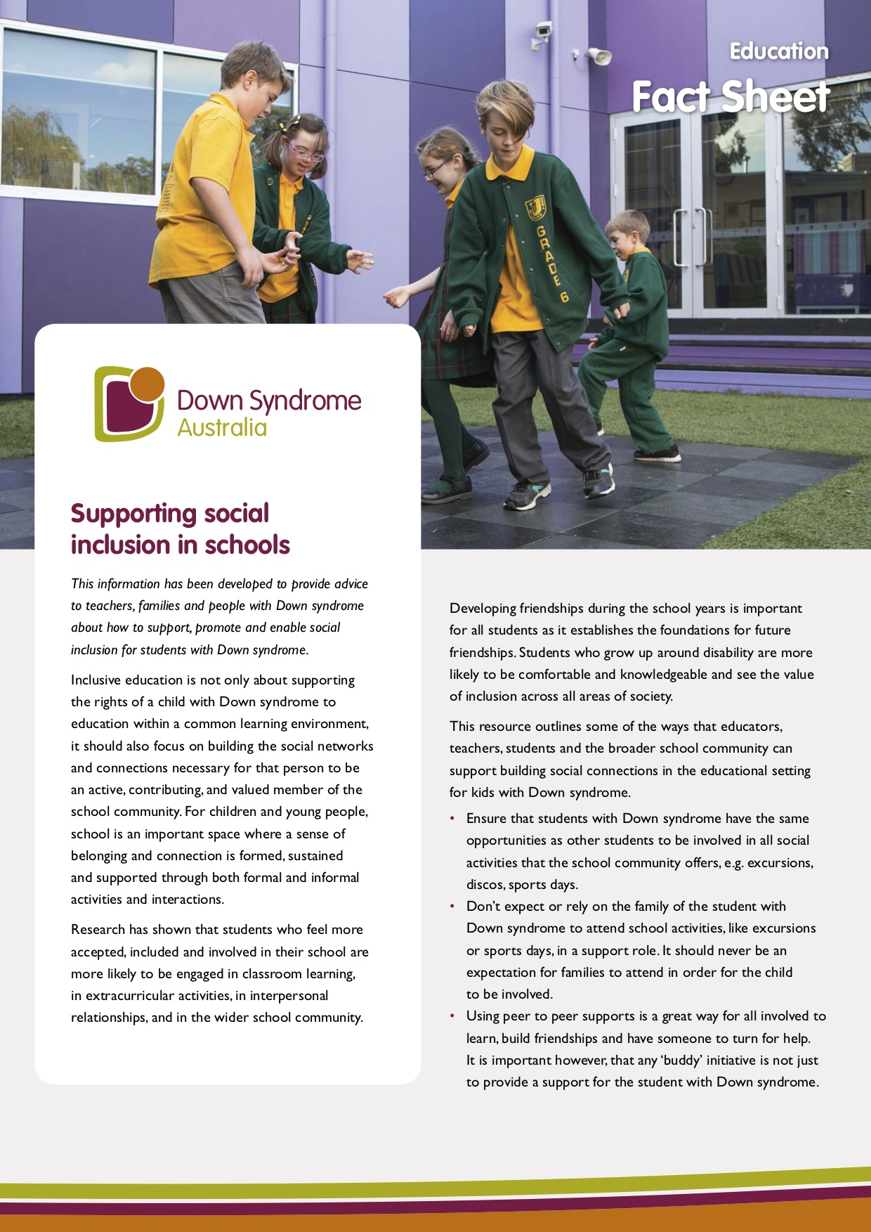 DSA supporting social inclusion in schools cover