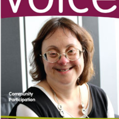 Cover image of Voice journal