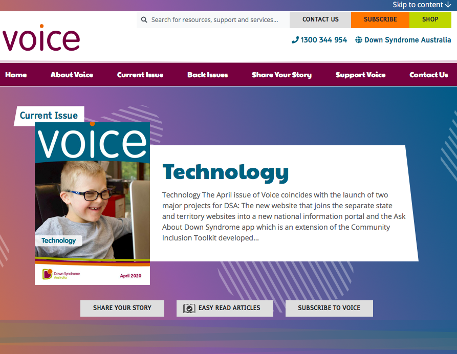 Voice website icon