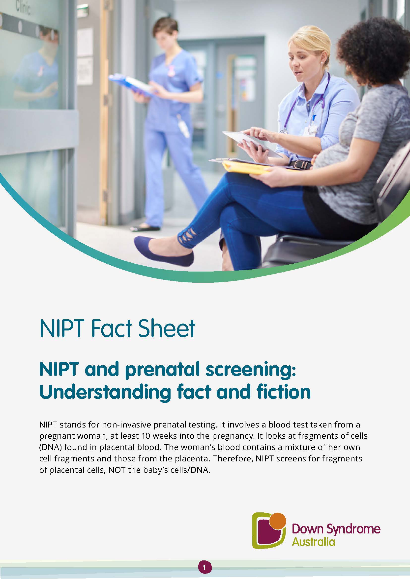 Cover of the NIPT fact sheet